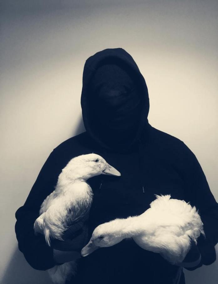 Dos patos liberados en Solidaridad con la ZAD en Reino Unido.