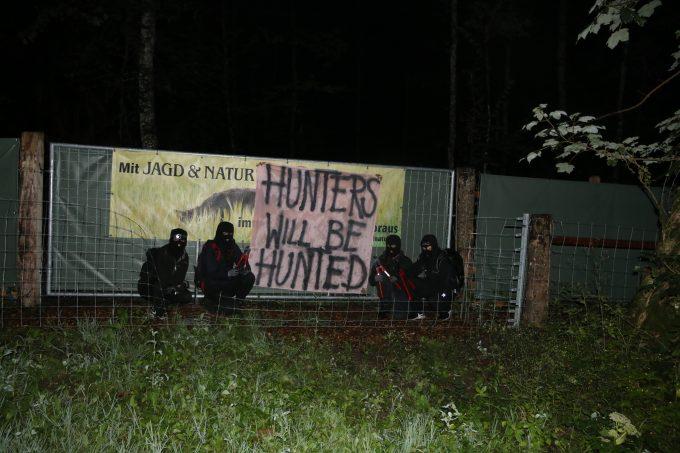 11 Jabalíes liberados de sus prisiones en Suiza.