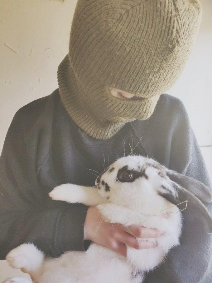 4 conejos liberados de una granja peletera en Reino Unido.