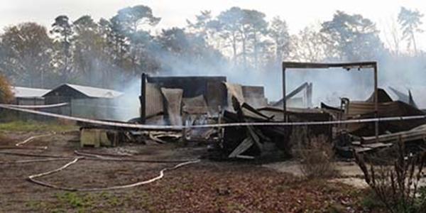 Un granero vacío en una granja de peletera fue incendiado en Suecia.